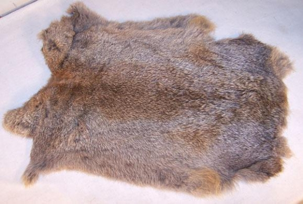 Rabbit skin hair on